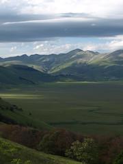Piano Grande, Umbria (Fraser P) Tags: flowers italy mountains primavera landscape spring umbria castelluccio pianogrande fiorita
