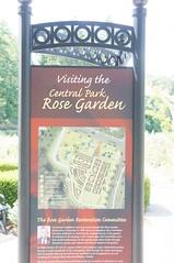 11838729_10153099669247076_7286314477690792636_o (jmac33208) Tags: park new york roses rose garden central schenectady