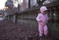 Jogging (Philocycler) Tags: pink chicago leaves fence evening toddler bokeh grantpark jogging chicagoist