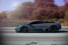 Lamborghini LP640 (eGarage.com) Tags: murcielago lamborghinilp640 egarage grigiotelesto