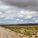 15 Atacama Socaire vers laguna Miscanti