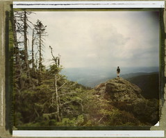 Habitat (Bastiank80) Tags: world camera trees color film nature field sunshine rain clouds analog standing polaroid big alone stones large hills there instant 4x5 sheet format expired habitat winds 79 valleys wista artlibres