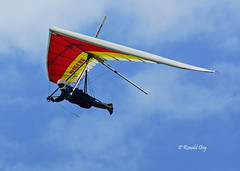 Jim Yocom (Ron1535) Tags: wing sail roll pitch soaring glider thermal hangglider hanggliding deltaplane yaw rigidwing airframe freeflying freeflight freeflyer variometer windcurrents hanggliderpilot flexiblewing glideraircraft soaringaircraft glidersports