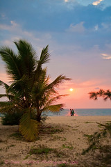 Don't Let the Sun Go Down on Me (Dave Hilditch Photography) Tags: india landscapes kerala ii beaches legacy shining netart coth theworldwelivein susets anawesomeshot mararibeachresort exoticimage