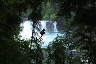 River in Chilean Rainforest