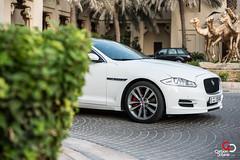 Jaguar XJL-3.jpg (CarbonOctane) Tags: white dubai shoot uae review july jaguar 2012 xj carbonoctanecom 2012jaguarxjl