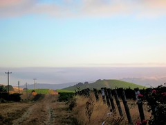 Looking North (SolanoSnapper) Tags: northerncalifornia farm napacounty americancanyon