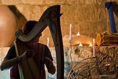 Celtic Harp - Tesori d'Etruria (Viterbo) (Axuria von Lionel) Tags: italy canonef50mmf18 celtic harp viterbo canoneos400d tesoridetruria andreaseki