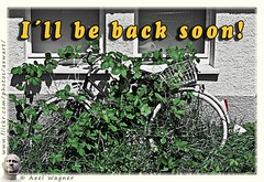 Be back soon (Axwart) Tags: pictures animal animals bike canon fun tiere funny break humor picture lustig bild fahrrad bilder tier witzig witzige axwart axwa