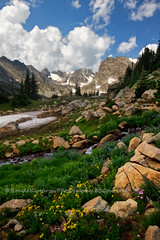 Summer (RondaKimbrow) Tags: summer mountains landscapes colorado heaven hiking wildflowers lakeisabelle indiancreekwilderness httprondakimbrowphotography500pxcom