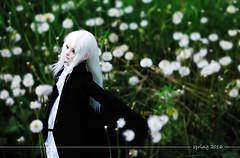 spring (milo_59) Tags: luv zaoll