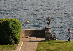 Il calcio  fantasia. (illyphoto) Tags: football calcio palla comolake lagodicomo pallone lario bambino illyphoto parcoditremezzo photoilariaprovenzi