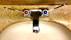 At The Watering Hole (GregKoren) Tags: handle bathroom hands sink horns faucet steer washing