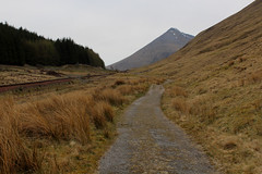 West Highland Way North of Tyndrum (Walruscharmer) Tags: scotland plantation stirlingshire beinndorain beinnodhar singletrackrailway oldmilitaryroad westhighlandrailway nationaltrail