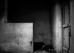 Like a Ghost House! (Vineeth Jaganathan) Tags: white house black canon ghost preset doorroom eos700d