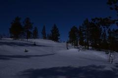 Winter moonlight (evenharbo) Tags: winter shadow snow nature norway night norge nikon moonlight sirdal vestagder nikond7100