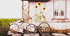 Luanes World (Netau) Tags: flowers bicycle photoshop effects photography photo 3d shadows ps bicycles sl secondlife virtual second vehicle visual virtualworld virtualart flowerscolors