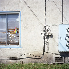 2016-320 (biosfear) Tags: berkeley rainbow equality grid americana