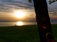 Tree Swing Sunset (HJharland5) Tags: sunset ohio sun lake tree water grass clouds lakeerie outdoor cleveland shoreline swing shore edge treeswing