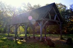 The barn (charlottehbest) Tags: november autumn trees light sunshine colours arboretum gloucestershire autumncolours westonbirt flare autumnal westonbirtarboretum 2015 charlottehbest