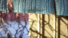 Tattered Blind (Theen ...) Tags: adelaide bare blind blue bokeh branches brick fabric fence fibres garage lines lumix metal shadecloth shadow shed suburban tattered tatters theen trees vertical wall winter woven yellow