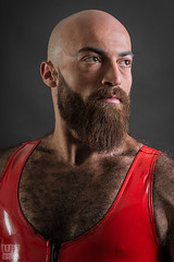 Mr. Bear Austria 2016 (Gabriel) (WF portraits) Tags: red portrait hairy man male studio beard model very chest bald rubber suit shaven aut irq gaymrbear