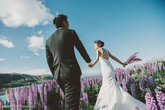 New Zealand Pre-Wedding (   ) (Kent Yu) Tags: new zealand   prewedding
