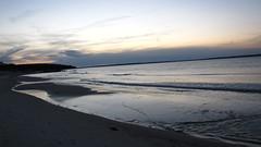 IMG_5811 (Martina Mastromonaco) Tags: beach vineyard martha s subset