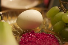(Steven Lev Art and Photography) Tags: raw passover sedar