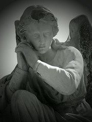 Send me an angel (Gerri Gray Photography) Tags: newyork cemetery grave graveyard statue stone angel dead death sadness mourning headstone tombstone upstate gravestone marker sorrow madisoncounty