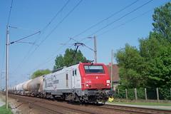 E 37 505 / Morbecque (jObiwannn) Tags: train locomotive prima alstom fret 37000 alsthom 27000 ferroviaire 37500 europorte