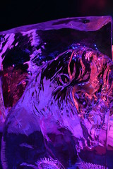 Iceworld 2006 - Luebeck - 35 (macpengin) Tags: germany luebeck icesculpture iceworld