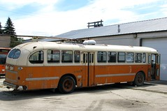 Winnipeg's last trolley bus (mrchristian) Tags: