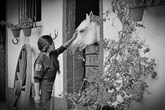 Friend (Iván Adrián) Tags: horse girl wheel mare teen stable mews cuadra caballeriza