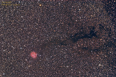 IC5146-B168-Tsapo-12072012_3 (Giovanni astrobond69) Tags: avalon linear lodestar b168 ic5149 tsapo906