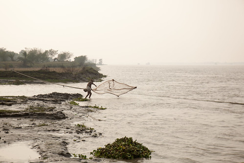 Small scale fisherman in Khulna. Photo by Mike Lusmore/Duckrabbit, 2012.