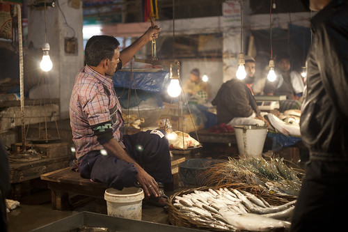 Fish market in Khulna, Bangladesh. Photo by Mike Lusmore/Duckrabbit, 2012.