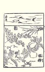Bottom  Chinese jujube, quince and cucumber (Japanese Flower and Bird Art) Tags: flower japan japanese book cucumber chinese picture anonymous woodblock quince cucurbitaceae jujube ukiyo rhamnaceae rosaceae sativus jujuba cydonia oblonga ziziphus cucumis readercollection