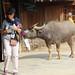 Lao Chai_4416