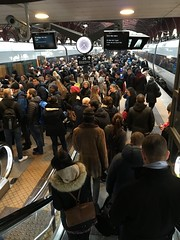 (bettinamccrae) Tags: people station train crowd commute rushhour