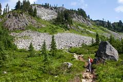 Admiring the Meadows (jpmckenna - Northern Plains Tour Coming Up) Tags: hiking northcascades getoutside hikingwashington washingtontrails lakeanntrail mtbakernationalrecreationarea mypubliclands