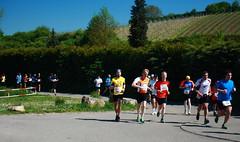halbmarathon1 (dmytrok) Tags: germany deutschland garten hn heilbronn badenwrttemberg flein weinberge