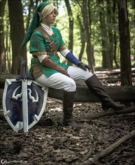 DSC_1818 (superheroblues) Tags: link zelda legendofzelda