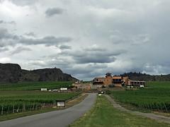 The view toward Burrowing Owl winery (jenniedo) Tags: oliver okanagan burrowingowl