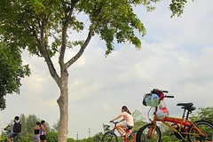 Health is Wealth (yadhavan.c) Tags: trees people canon cycling evening singapore ride outdoor scene health cycle ckphotography yadhavancphotography