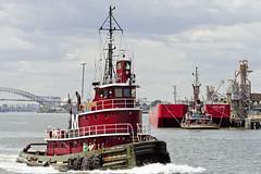 r_160519206_whcedu_a (Mitch Waxman) Tags: newyorkcity newyork newjersey tugboat statenisland moran bayonnebridge killvankull workingharborcommittee educationtour