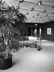 Zentrale der Deutschen Bundesbank (nk_jan) Tags: frankfurtmain foma400 bronicarf645 zenzanonrf45 kodakhc110 germanfederalbank deutschebundesbank kunstprivat