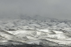 Nevada foothills covered by winter snow 120306-114316 C4e (Wambeke & Wambeke Photography, Art, & Textiles) Tags: snowcappedmountains snowcoveredmountains snowcoveredfoothills nevada nevadadesert nevadamountains charliewambekephotography canoneos60dphotograph wambekeandwambekephoto wambekewambekephotographyarttextiles rollinghills
