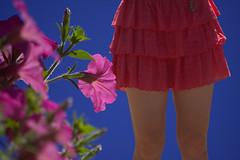 Flower  & Skirt (swong95765) Tags: life flowers woman plant flower beauty dress outdoor bluesky skirt petunia