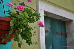 colors of burano (Rex Montalban Photography) Tags: venice italy europe colours burano rexmontalbanphotography